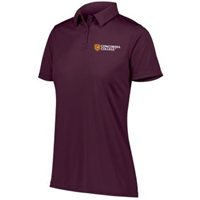 Uf403 Ladies Left Chest Embroidered Polo Shirt