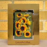 Fr-02 Concordia Vertical Gold Metal Frame 4X6